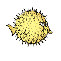 Answer openbsd